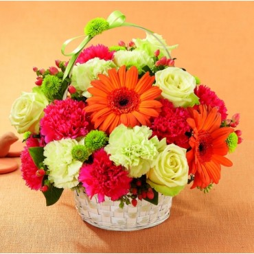 Colorful basket of orange Gerbera daisies