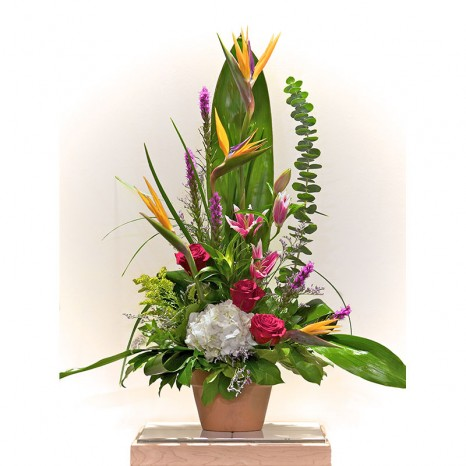 Bird of Paradise basket
